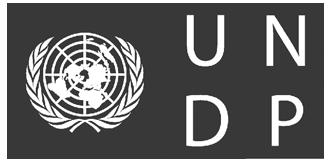 UNDP LOGO BIANCO