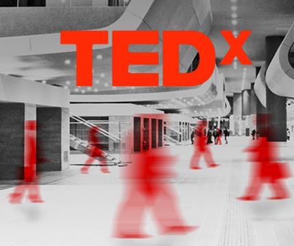 TED_portfolio